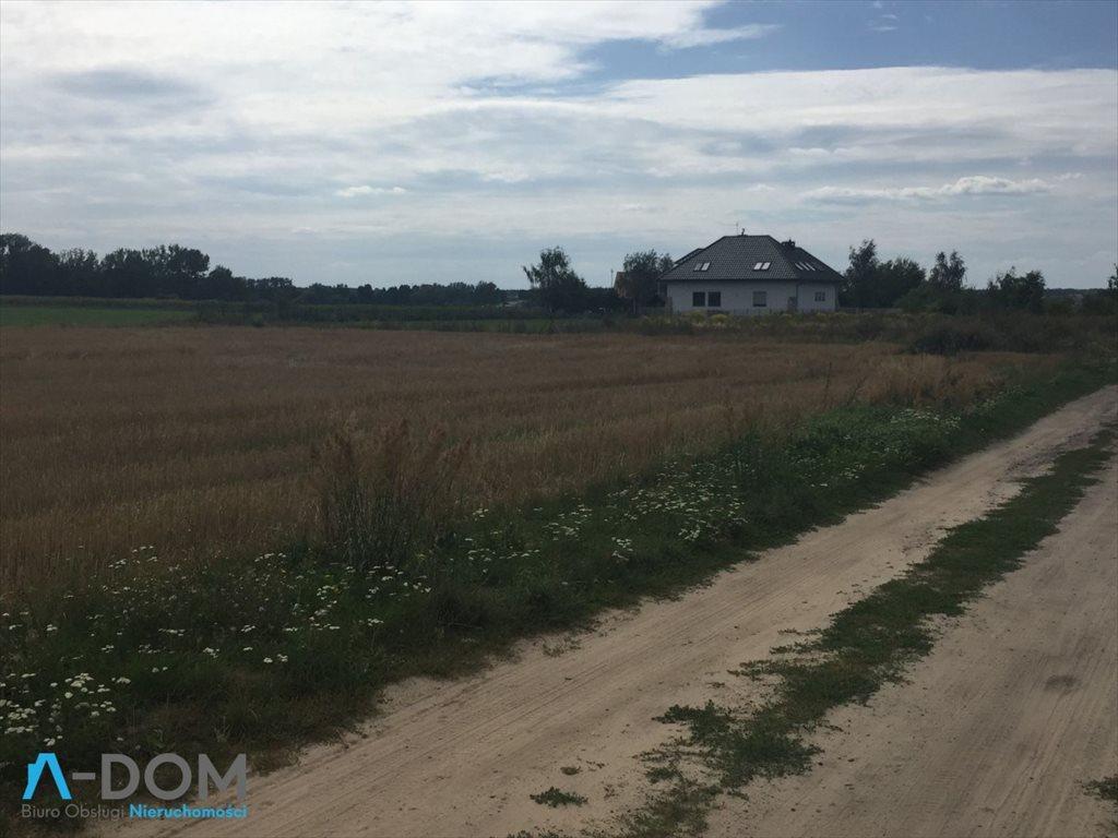 Działka budowlana na sprzedaż Więckowice  3871m2 Foto 6