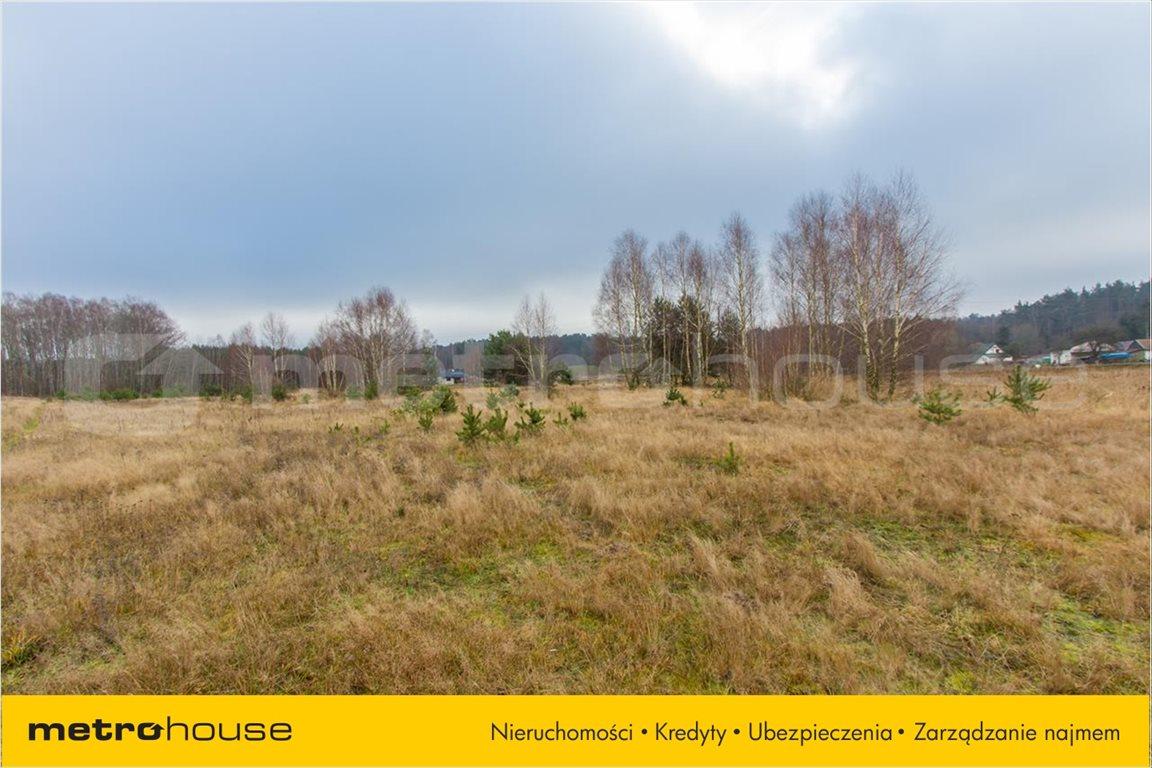Działka rolna na sprzedaż Jelonek, Borne Sulinowo  30900m2 Foto 2