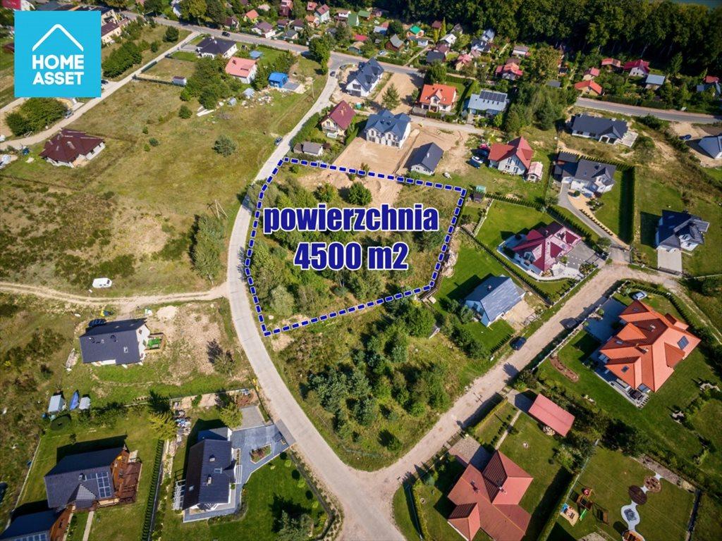 Działka budowlana na sprzedaż Warzenko, Nad Stawem  4500m2 Foto 8