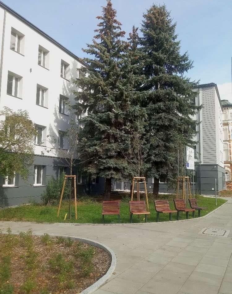 Lokal użytkowy na wynajem Olsztyn, Centrum, Centrum  31m2 Foto 4