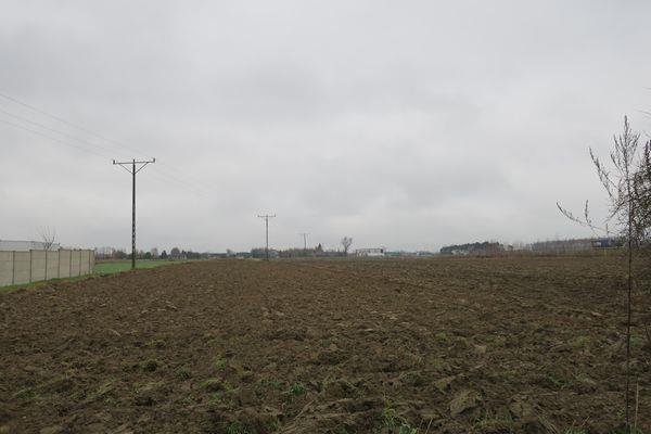 Działka budowlana na sprzedaż Sławno, Janów  25800m2 Foto 11