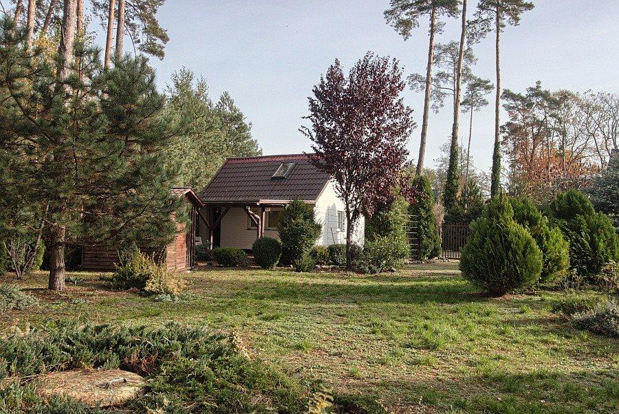 Dom na sprzedaż Morzyczyn  40m2 Foto 1