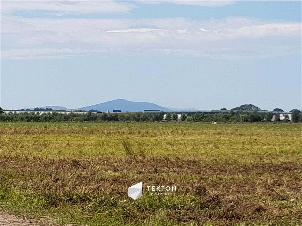 Działka rolna na sprzedaż Mokronos Dolny, Morelowa  3000m2 Foto 1