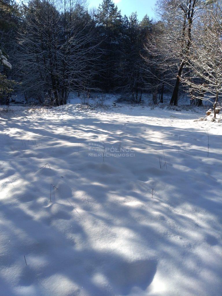 Działka leśna na sprzedaż Kuźnica  6100m2 Foto 8
