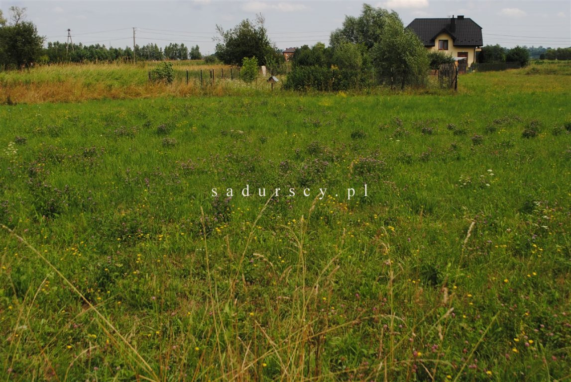 Działka budowlana na sprzedaż Nieszkowice Małe  1205m2 Foto 1