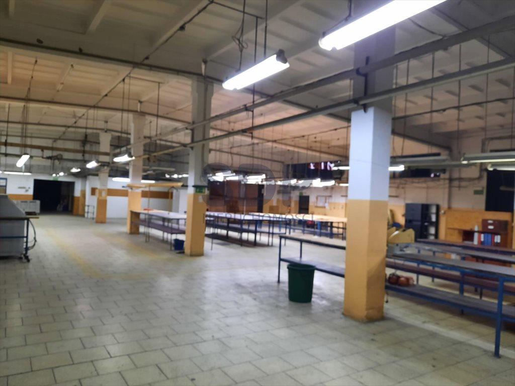 Lokal użytkowy na sprzedaż Wołów  21000m2 Foto 11
