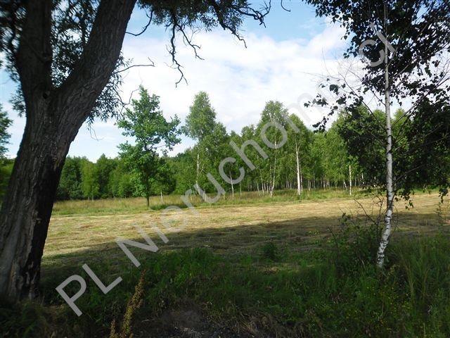 Działka rolna na sprzedaż Sokóle  5511m2 Foto 3