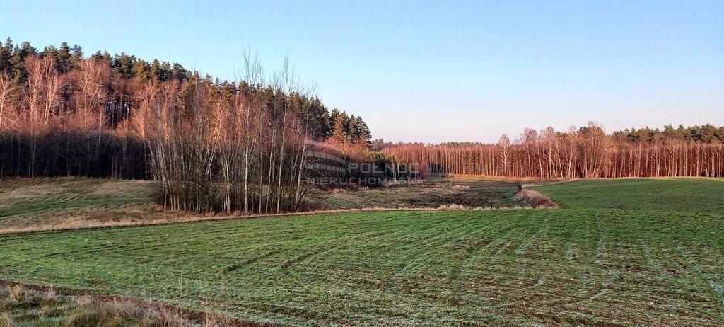 Działka leśna na sprzedaż Samagowo  26558m2 Foto 4