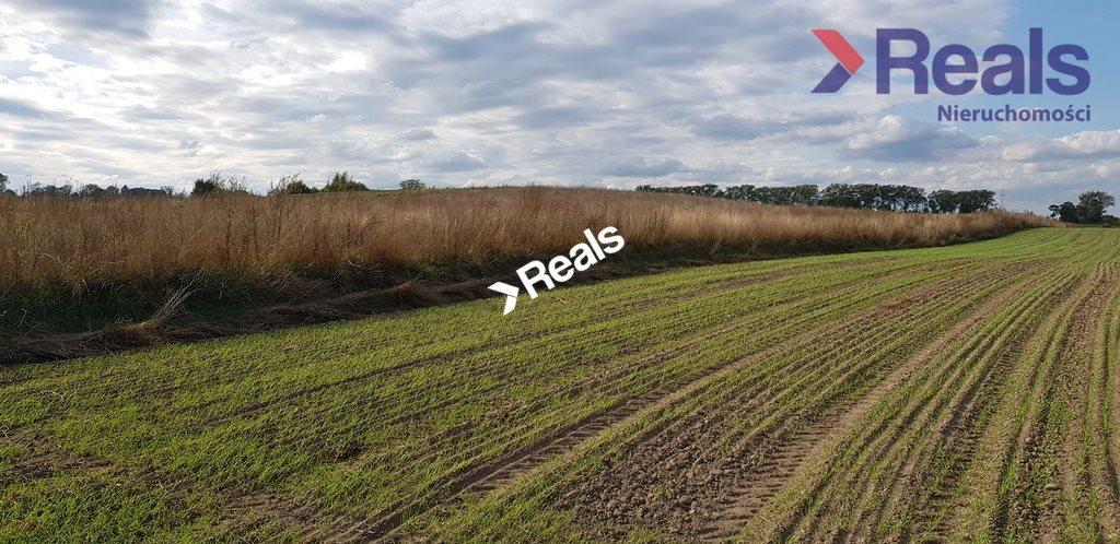 Działka rolna na sprzedaż Dąbrówka Polska  451200m2 Foto 5