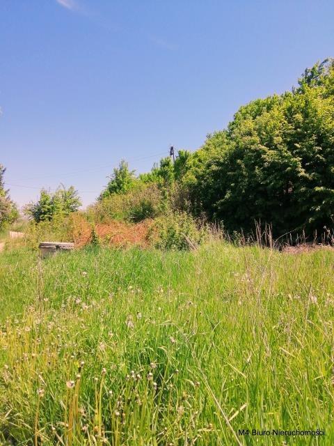 Działka budowlana na sprzedaż Potok  2000m2 Foto 4
