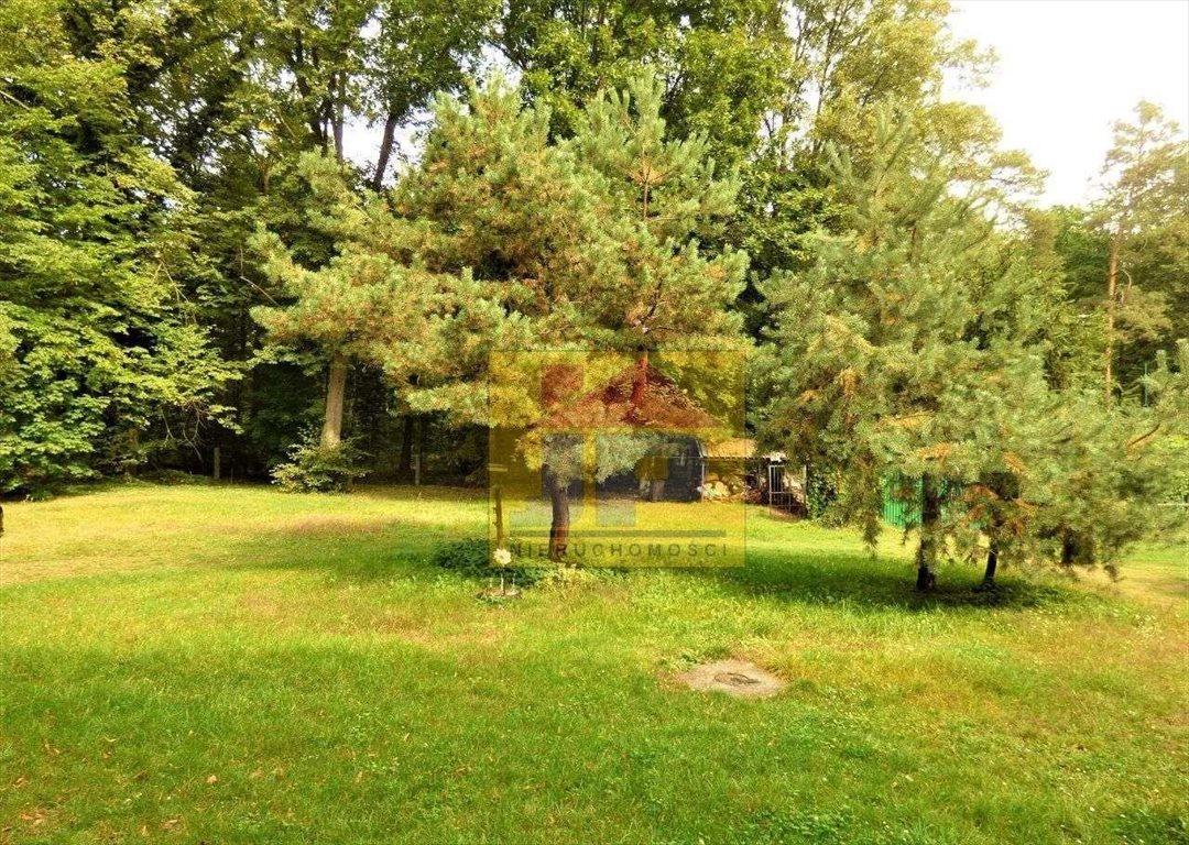 Mieszkanie dwupokojowe na sprzedaż Radomierowice  69m2 Foto 2