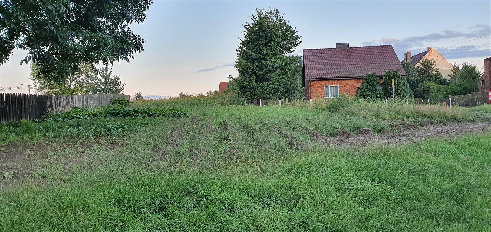Działka budowlana na sprzedaż Zdziechowice  600m2 Foto 2