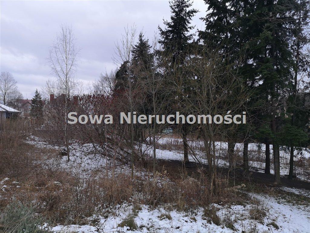 Działka inna na sprzedaż Wałbrzych, Biały Kamień  6000m2 Foto 1