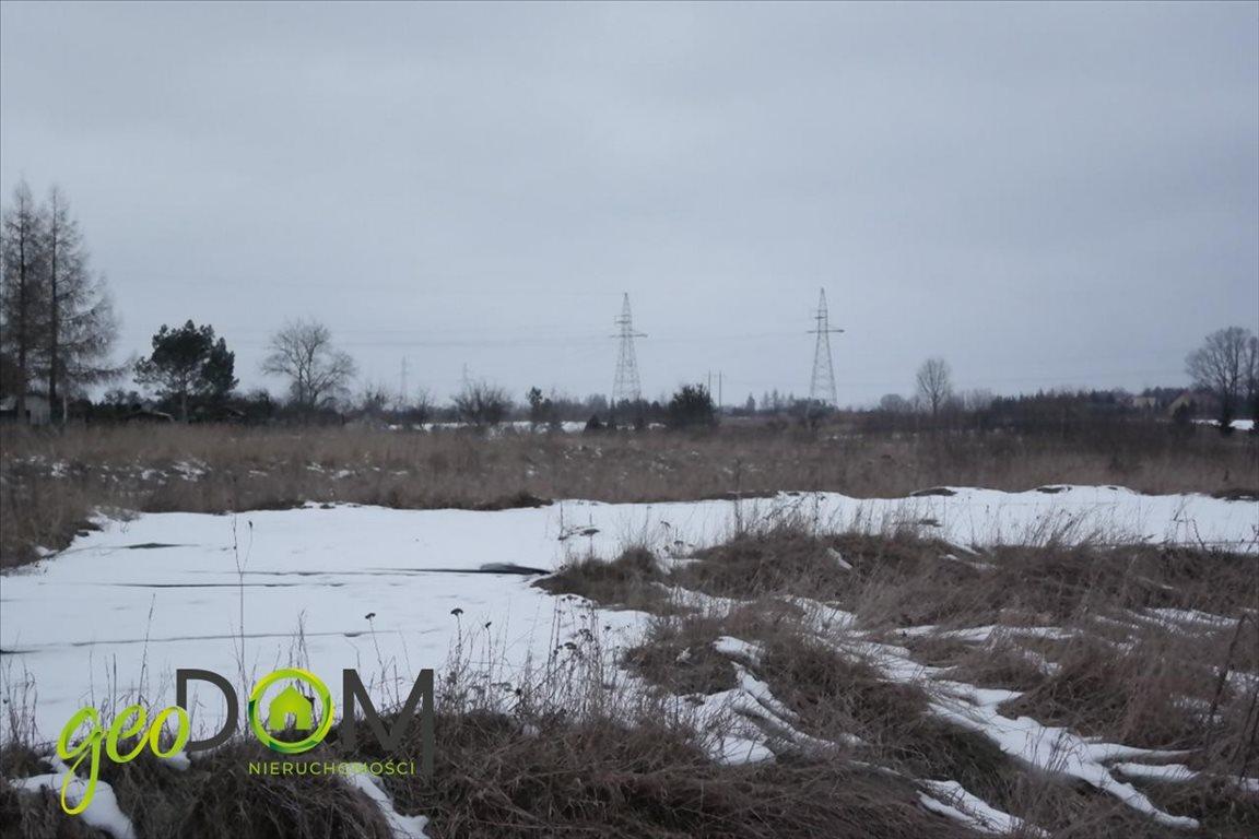 Działka budowlana na sprzedaż Chełm, Poleska  3000m2 Foto 4