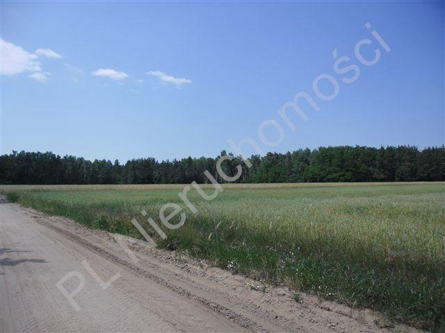 Działka rolna na sprzedaż Stanisławów  4567m2 Foto 4