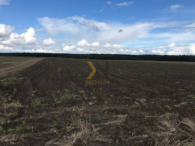 Działka rolna na sprzedaż Błonie, Przemysłowa  27074m2 Foto 6