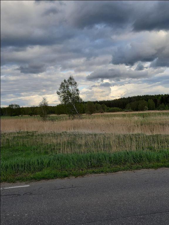 Działka rolna na sprzedaż Mostkowo, Mostkowo, Mostkowo  22000m2 Foto 4