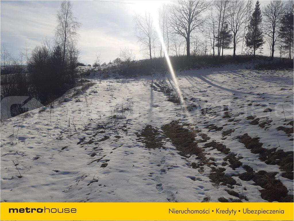 Działka rolna na sprzedaż Orelec, Olszanica  9700m2 Foto 5