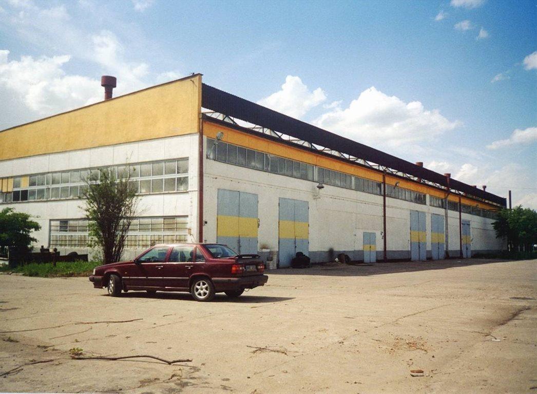 Lokal użytkowy na sprzedaż Nowy Dwór Mazowiecki, ul. Przemysłowa  36903m2 Foto 4