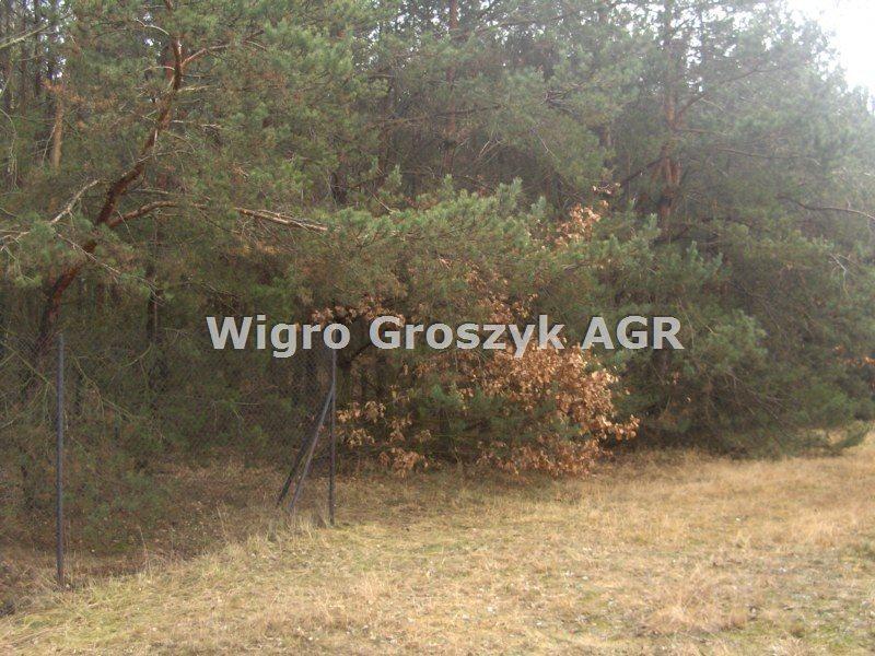 Działka leśna na sprzedaż Stanisławów  3076m2 Foto 7