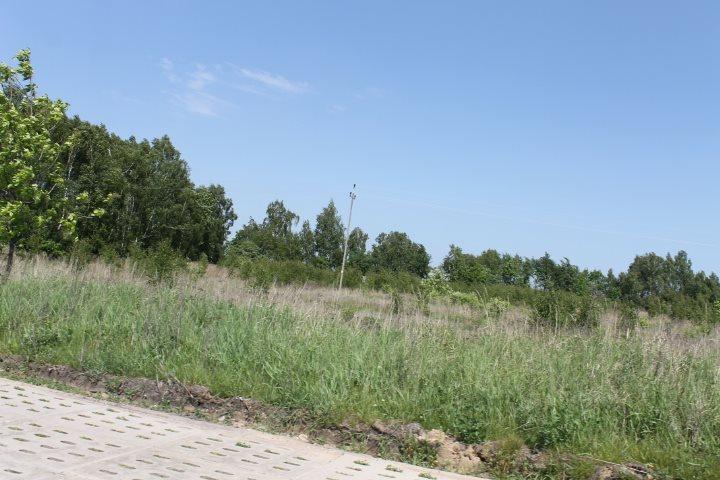 Działka rolna na sprzedaż Łódź, Widzew, Stare Moskule, Opolska  14997m2 Foto 5