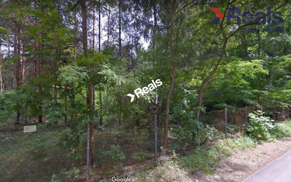 Działka leśna z prawem budowy na sprzedaż Konstancin-Jeziorna  3252m2 Foto 3