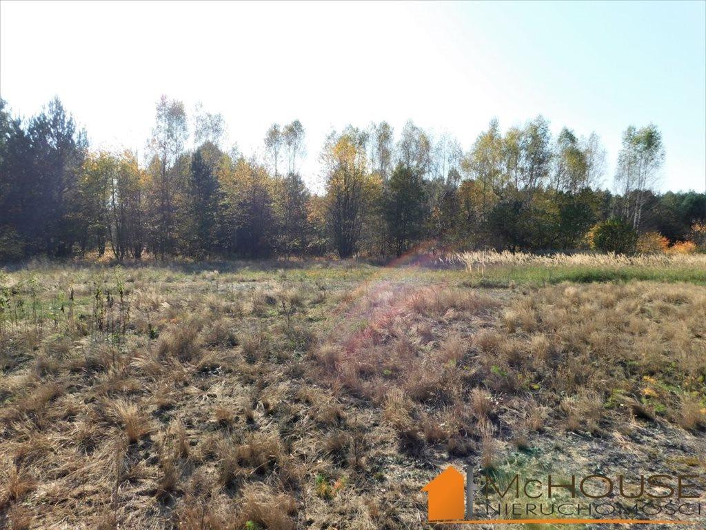 Działka rolna na sprzedaż Huta Komorowska, Huta Komorowska  5350m2 Foto 7