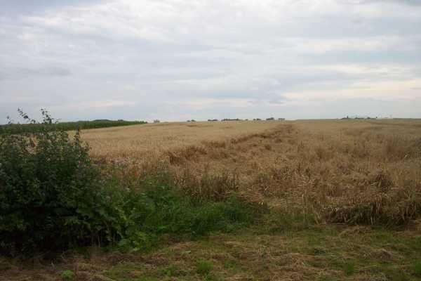 Działka rolna na sprzedaż ok. Trzebnicy, Polna  80000m2 Foto 1