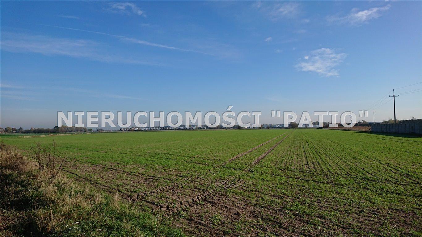 Działka przemysłowo-handlowa na sprzedaż Dopiewo, Dąbrowa, Batorowska  35300m2 Foto 4