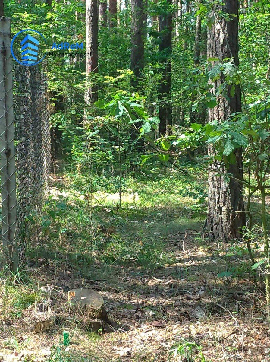 Działka leśna na sprzedaż Bogatki, Azalii  1800m2 Foto 3