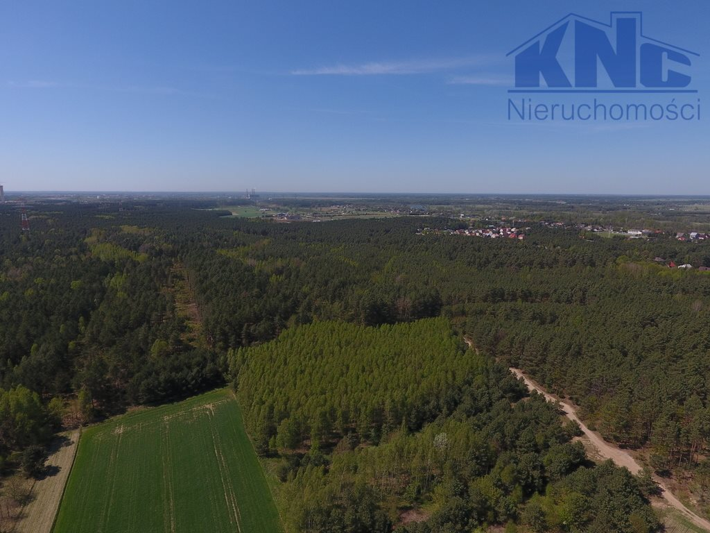 Działka leśna na sprzedaż Laskowiec  5400m2 Foto 6