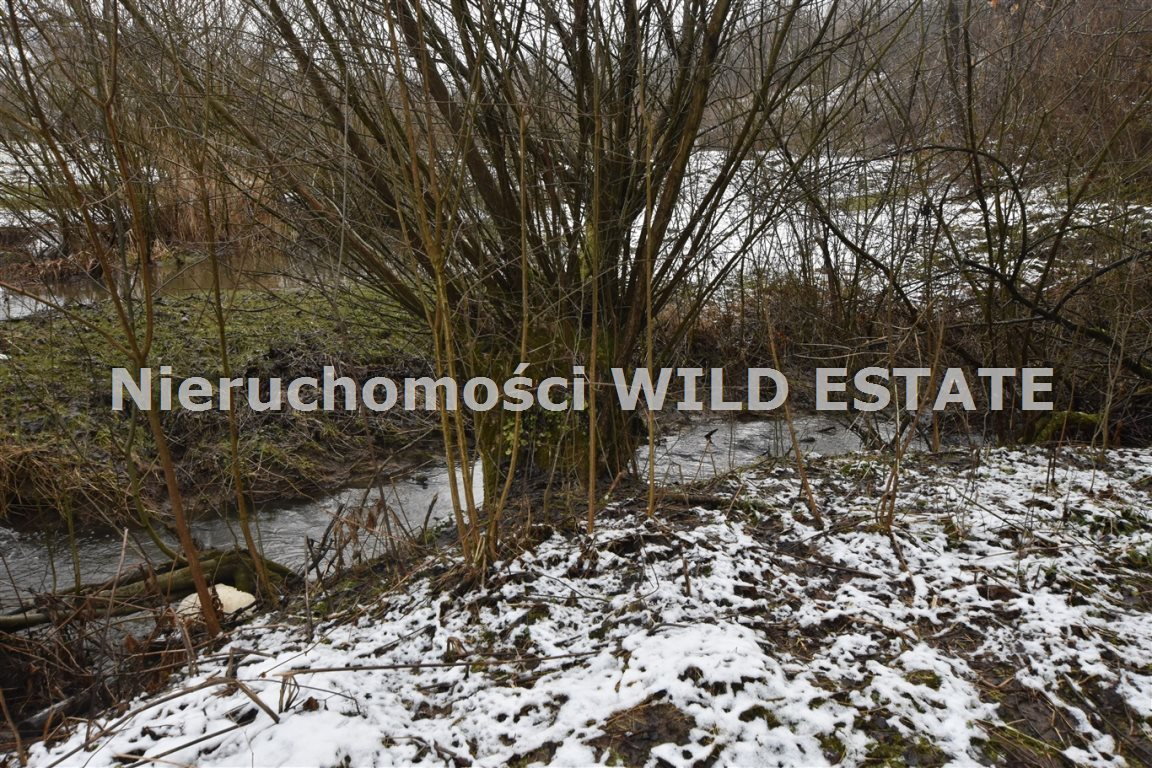 Działka rolna na sprzedaż Olszanica, Paszowa  3891m2 Foto 3