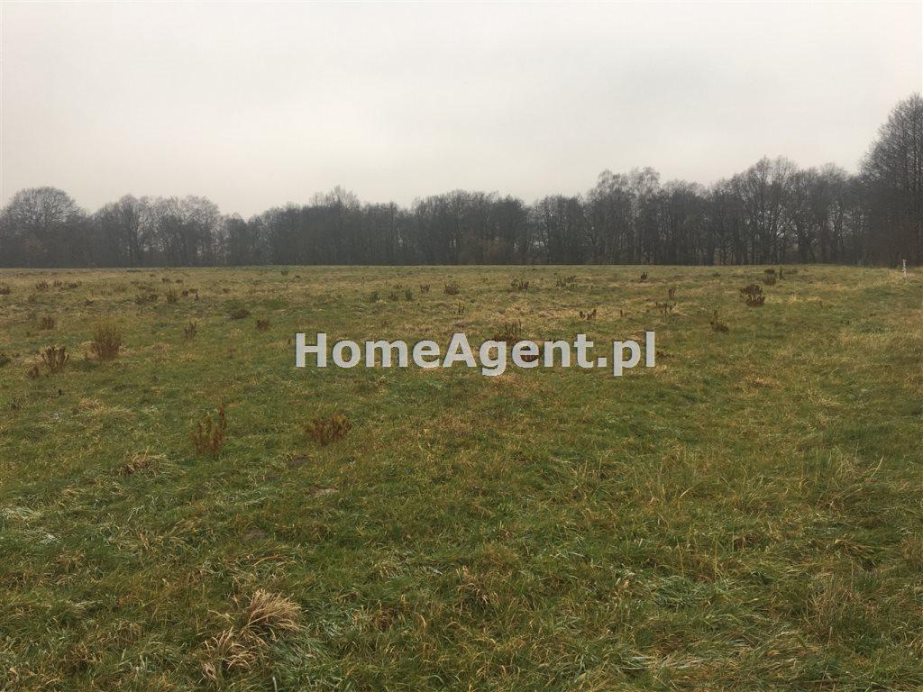Działka rolna na sprzedaż Mikołów, Paniowy, ok. Rybołówka  6519m2 Foto 1