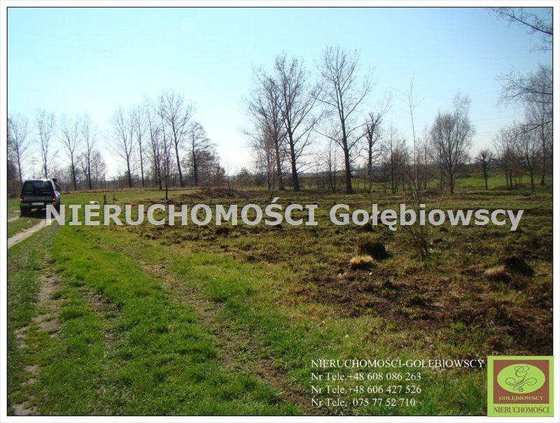Działka inna na sprzedaż Jędrzychowice  3952m2 Foto 4