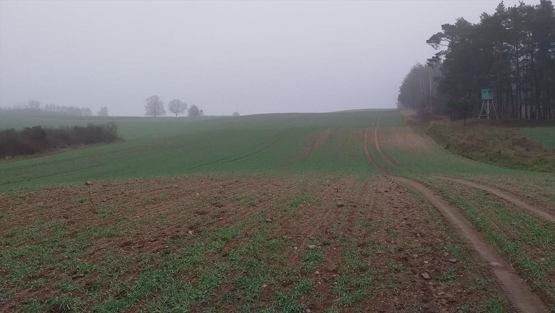 Działka gospodarstwo rolne na sprzedaż Klucznik  7000000m2 Foto 8