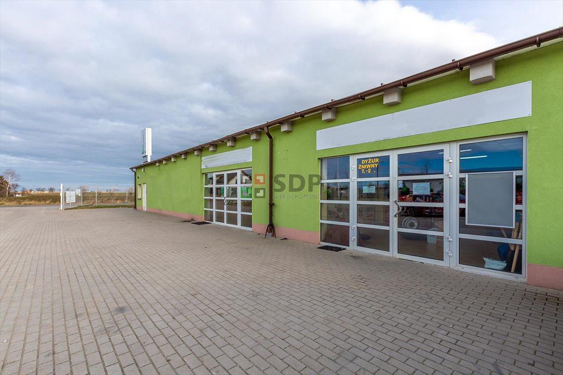 Działka inwestycyjna na sprzedaż Budziszów Wielki  9276m2 Foto 2