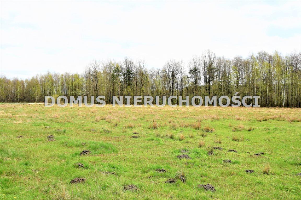 Działka leśna na sprzedaż Grębosze  44100m2 Foto 2