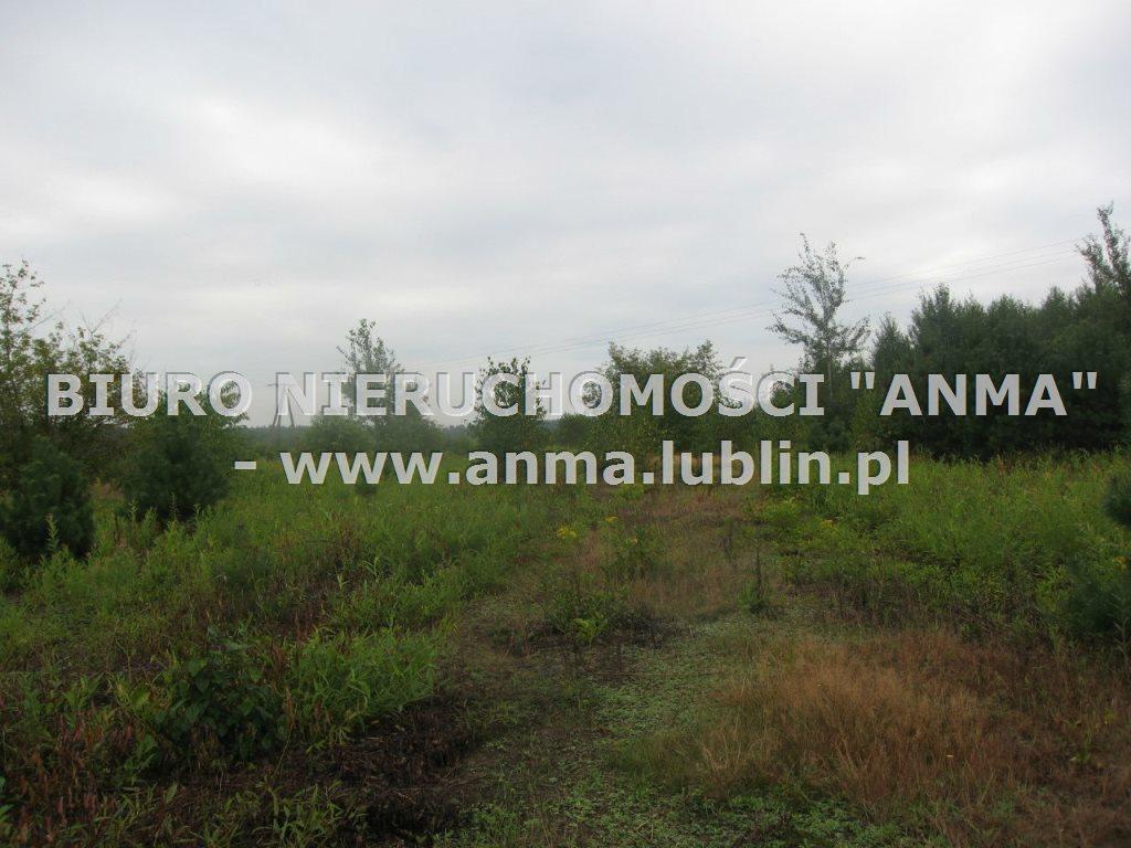 Działka budowlana na sprzedaż Kazimierz Dolny  5900m2 Foto 1