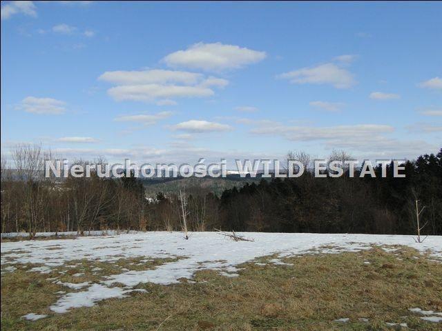 Działka rolna na sprzedaż Lesko, Lesko  4225m2 Foto 2