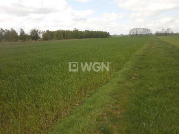Działka rolna na sprzedaż Czarny Las, Częstochowska  23000m2 Foto 2