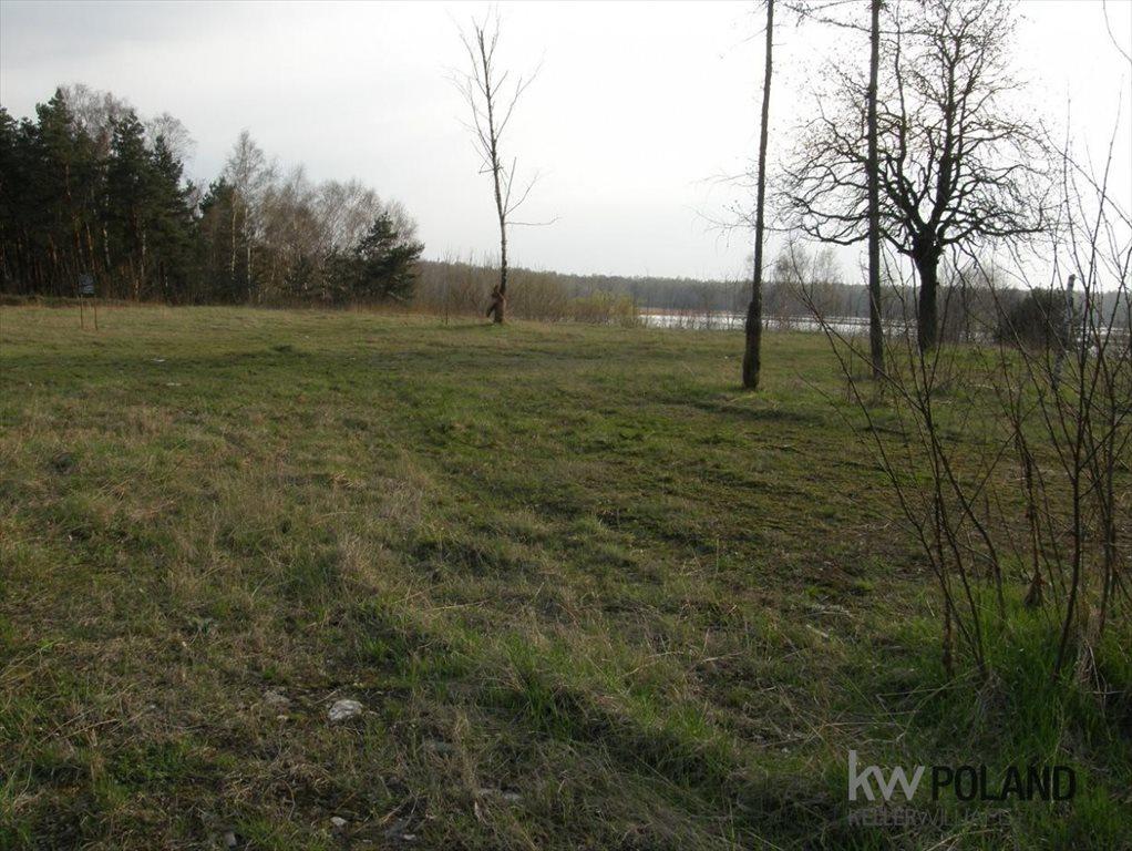 Działka budowlana na sprzedaż Dąbrowa Górnicza, Św. Antoniego  5144m2 Foto 8