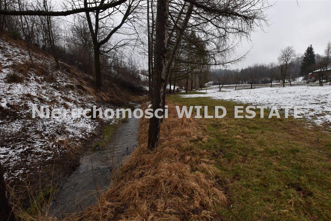 Działka rolna na sprzedaż Olszanica, Paszowa  4376m2 Foto 7