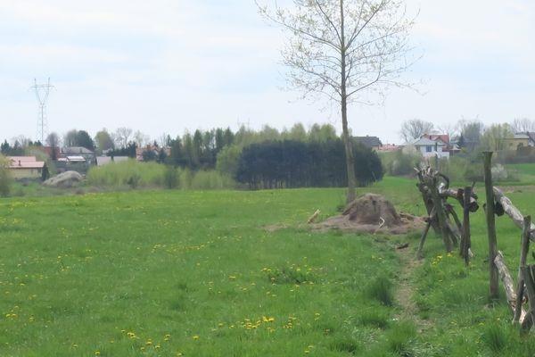 Działka budowlana na sprzedaż Cerekiew, Cerekiew  7832m2 Foto 10