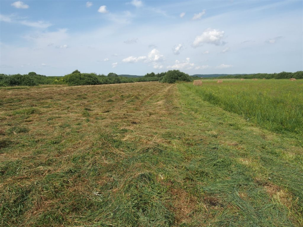Działka rolna na sprzedaż Reda, Moście Błota  12700m2 Foto 3
