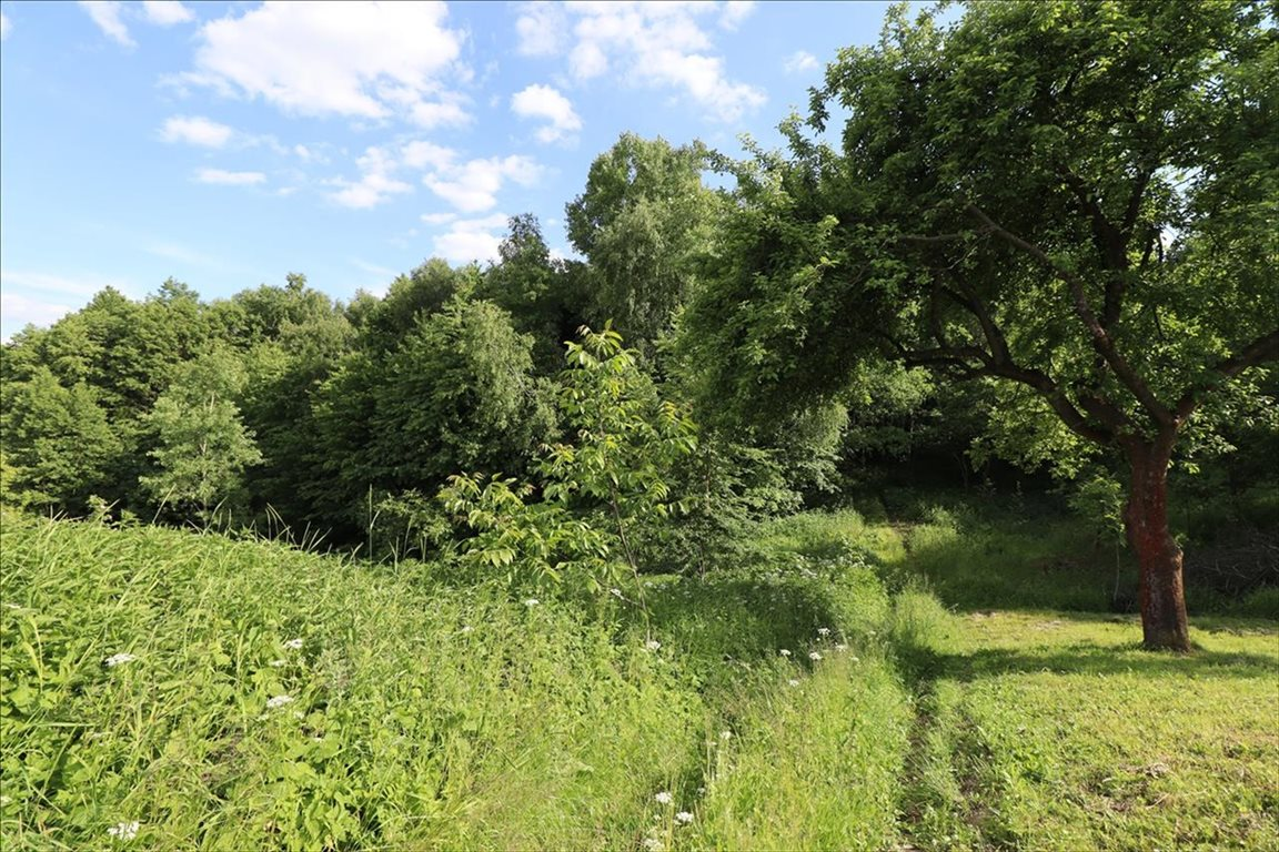 Działka rolna na sprzedaż Wola Zgłobieńska, Boguchwała  7500m2 Foto 3
