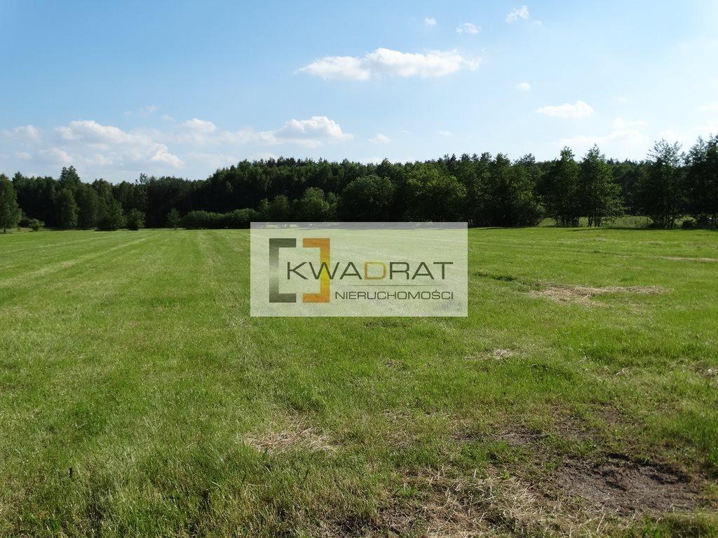 Działka rolna na sprzedaż Celinów  33500m2 Foto 9