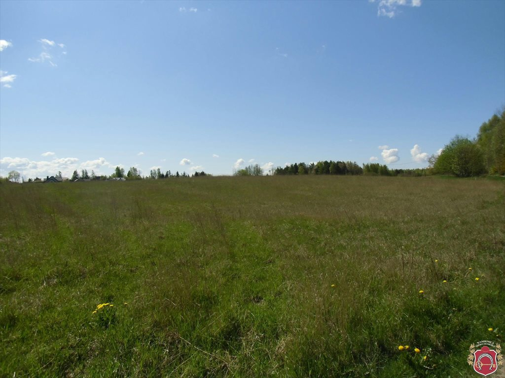Działka rolna na sprzedaż Bojano, Wołoszyna  180000m2 Foto 5