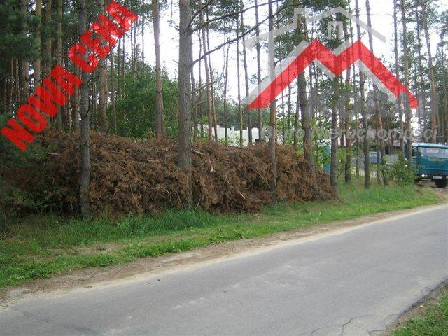 Działka budowlana na sprzedaż Cybulice Małe, Cybulice  10134m2 Foto 3