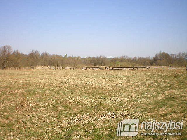 Działka rolna na sprzedaż Szczecin, Skolwin  10581m2 Foto 3