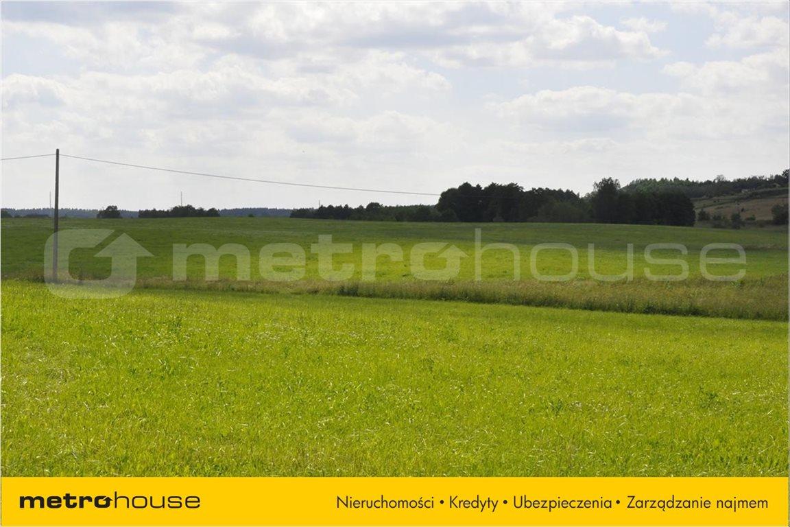 Działka rolna na sprzedaż Blanki, Lidzbark Warmiński  10921m2 Foto 3